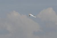 Aerotranio 2007-22